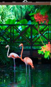 gibkij-obogrevatel Розовый Фламинго